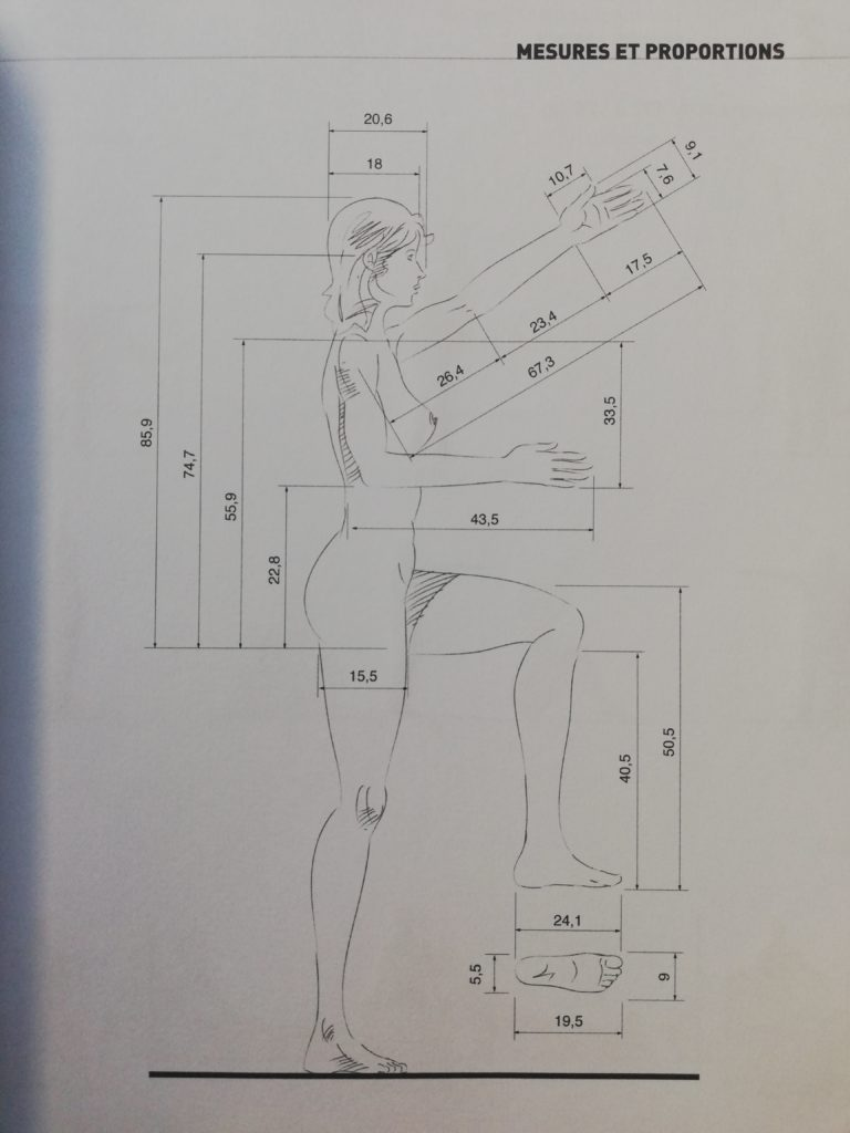 dimensions femme